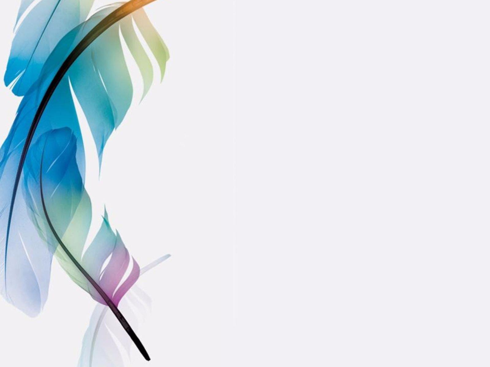Hình nền PowerPoint lông vũ sắc màu